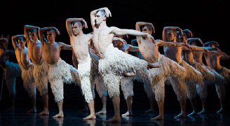 The all-male corps of in Swan Lake
